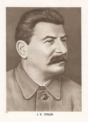 portrait-jvs