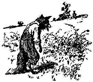 briarpatch1881